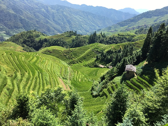 טראסות אורז, טיול מאורגן לסין
